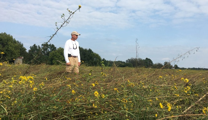 Florence Delivers Staggering Blow to Wild Seed Farm